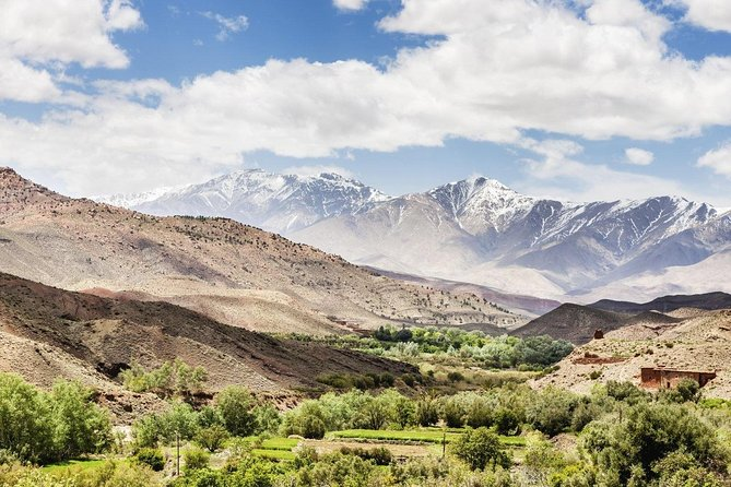 Atlas Mountains and 4 Valleys and Waterfall Day Trip From Marrakech