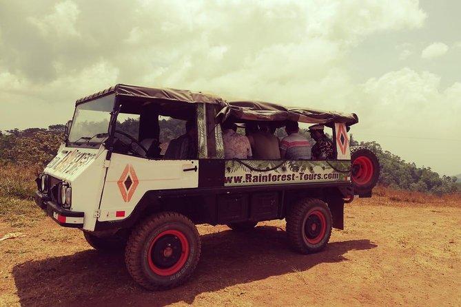 4x4 Rainforest Adventure Booze Safari