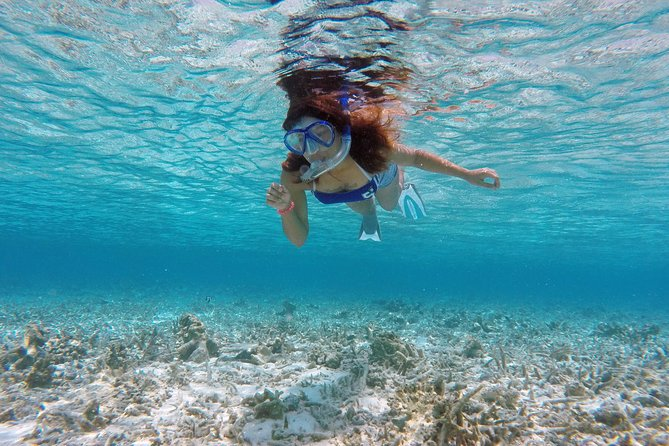 Guided Snorkeling Trip