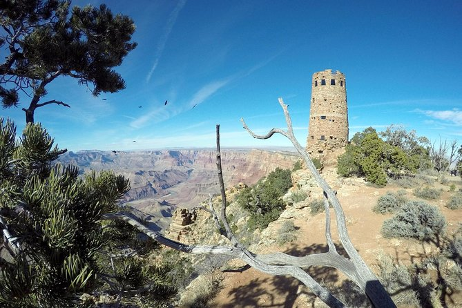 Grand Canyon Sightseeing Tour from Williams