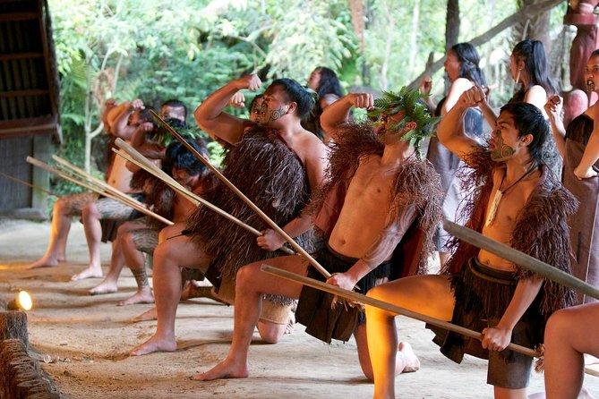 Trifecta- Waitomo Cave, Whakarewarewa Cultural Performance in Rotorua & Hobbiton