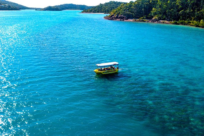 Airlie Beach Glass Bottom Boat Tour