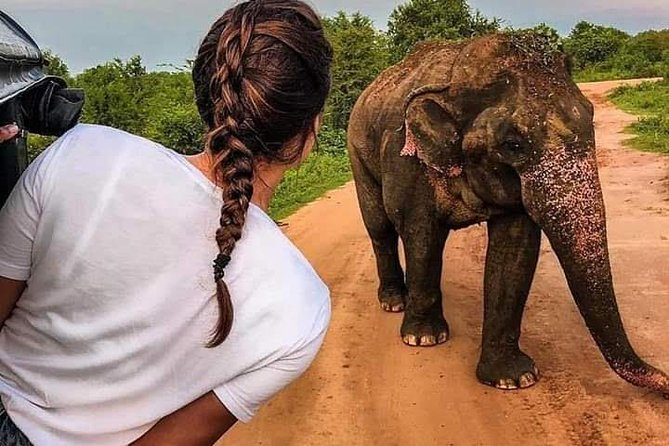 Best Of Sri lanka Tour (06 Days 05 Nights) - Kandy- N.Eliya -Bentota-Colombo
