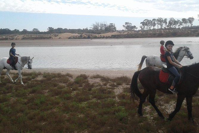 trip 2 hours to natural agadir city beach / forest / river / birds