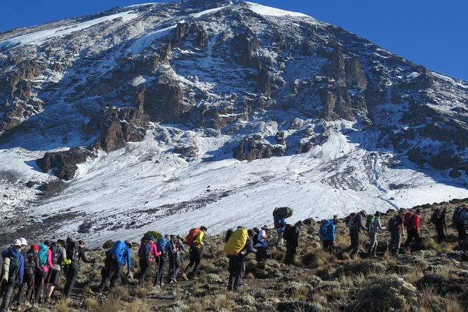 7 Days Mount Kilimanjaro Hiking- Rongai Route photo 8