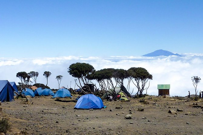 7 Days Mount Kilimanjaro Hiking- Rongai Route photo 2