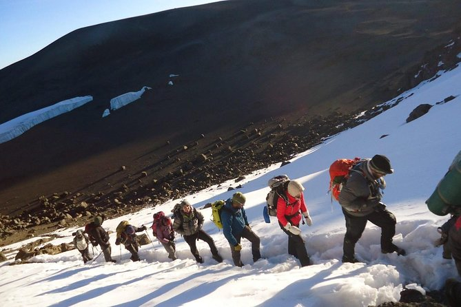 7 Days Mount Kilimanjaro Hiking- Rongai Route photo 11
