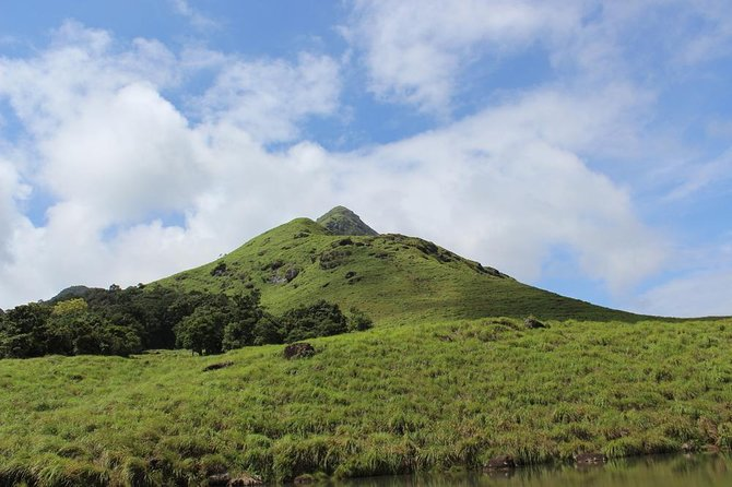 Sightseeing and Western Ghats Highest Peak Exploration, Wayanad - A Private Tour