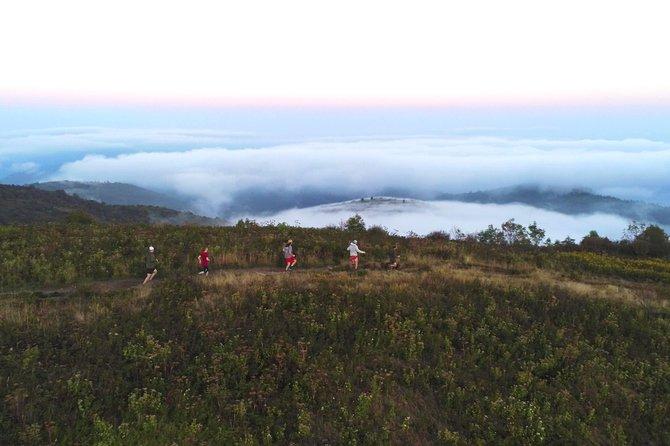Black Balsam Trail Running Tour