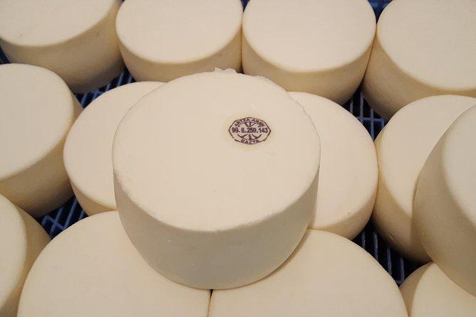 Idiazabal Cheese Farm Tour from San Sebastian