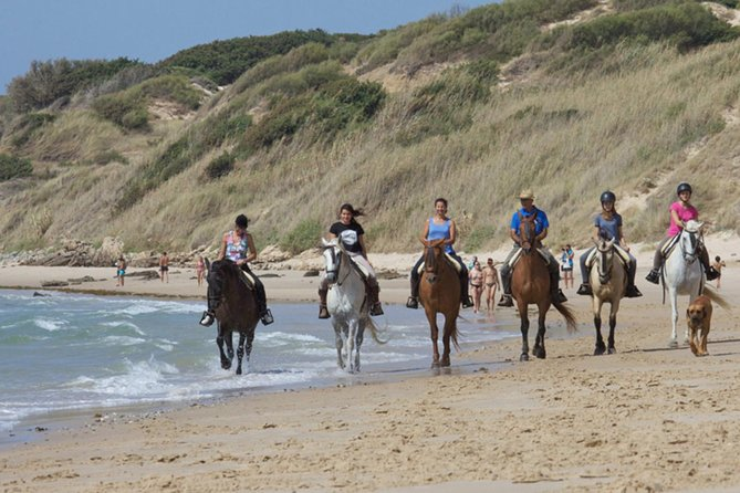 Horseback Riding in Tarifa with picnic, Spain