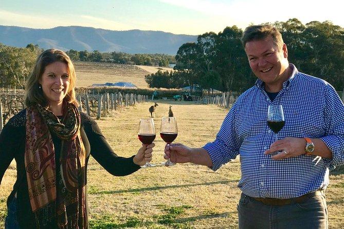 Hunter Valley Wine, Cheese & Koalas