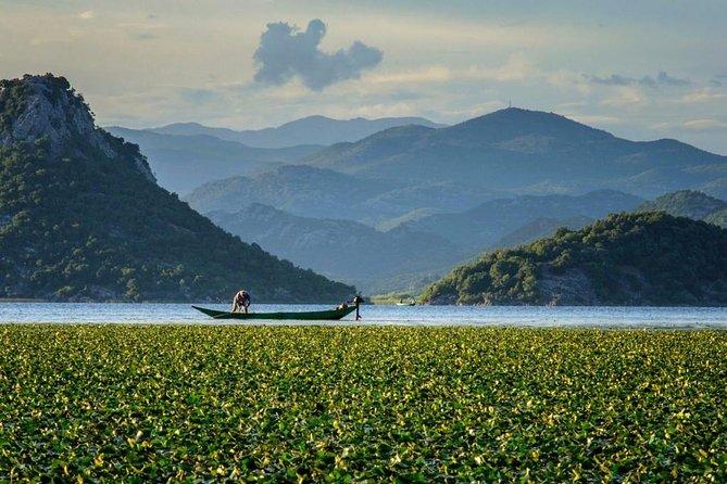 "Skadar lake boat ride through the ""Montenegrin Amazon""and organic wine tasting"