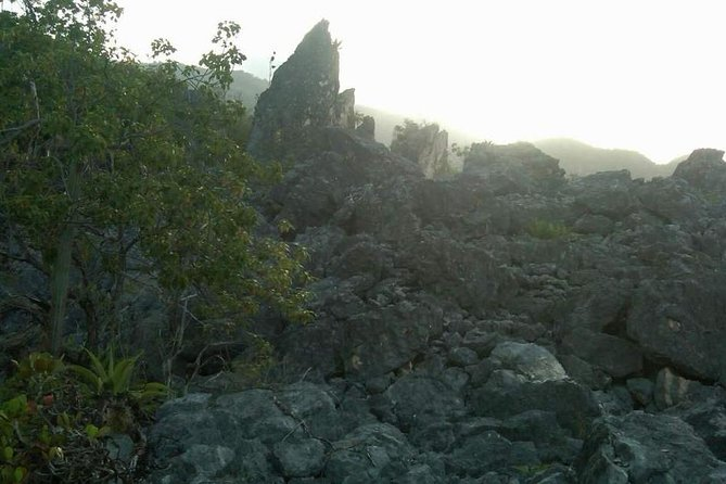 Judgement Cliff Sightseeing and Hiking Excursion Tour from Kingston
