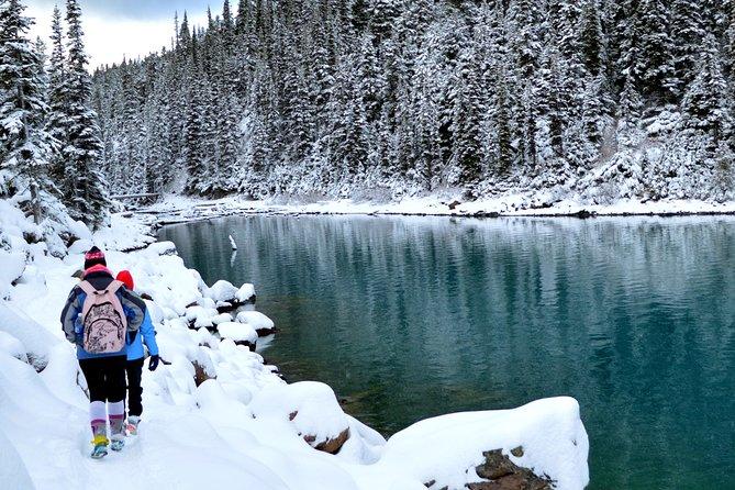 Garibaldi Lake Sneeuwschoenwandelen en fotografietour - ARCHIEF