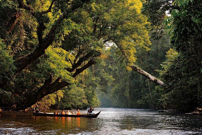 タマンネガラ国立公園を冒険し、クアラガンダ象保護センターを訪れる2日間のツアー