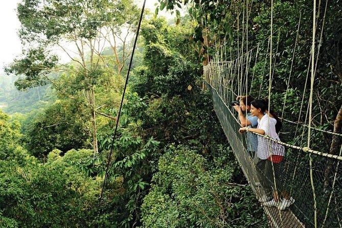 タマンネガラ国立公園+キャメロンハイランドツアー-3D2N