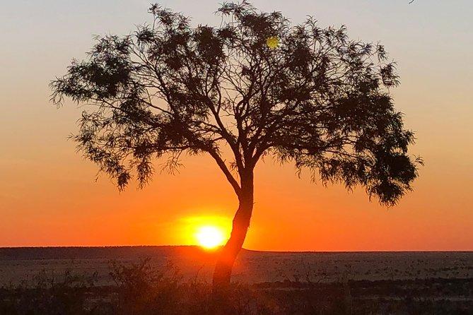 Rangelands Sunset Tour