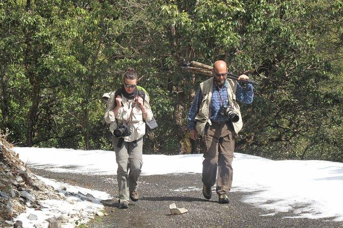 Pangot - A Himalayan Holiday near Nainital