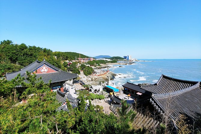 Full Day - Busan Customizable Private Tour with Local driving tour guide