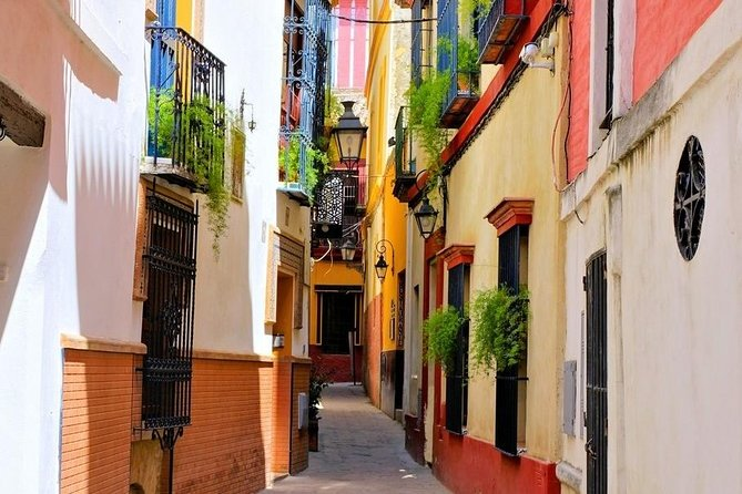 Historical Sights and Tasty Tapas in Seville's Jewish Quarter photo 1