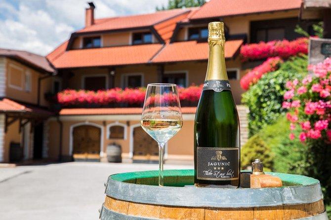 Plesivica Region Wine Tasting Half-day Private Tour