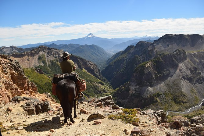 Multi-day horseride in the Andes