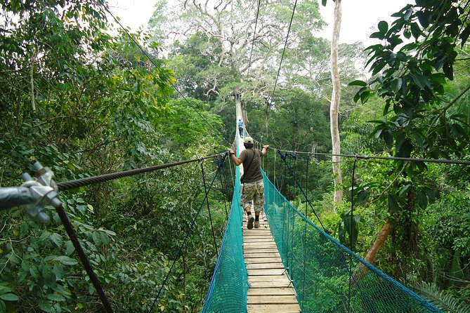 Jungle Eco Jungle And Adventure - 4 Days / 3 Nights