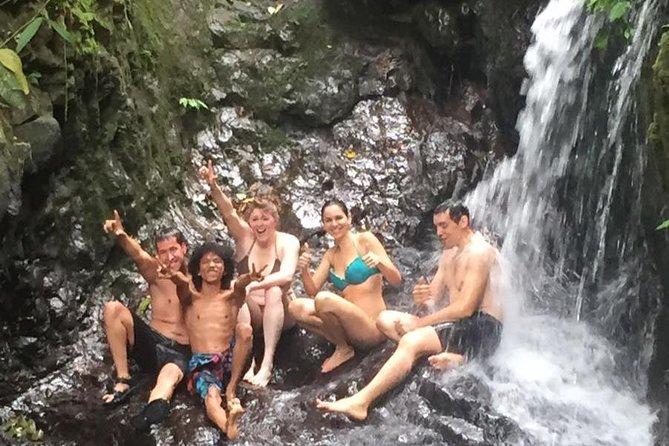 1-Day Jungle Trekking - Gunung Leuser National Park