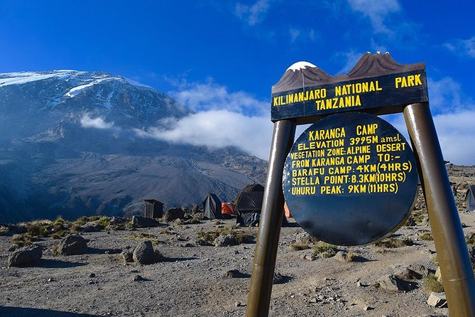 8 Days 7 Nights Kilimanjaro Climb Via Lemosho Route
