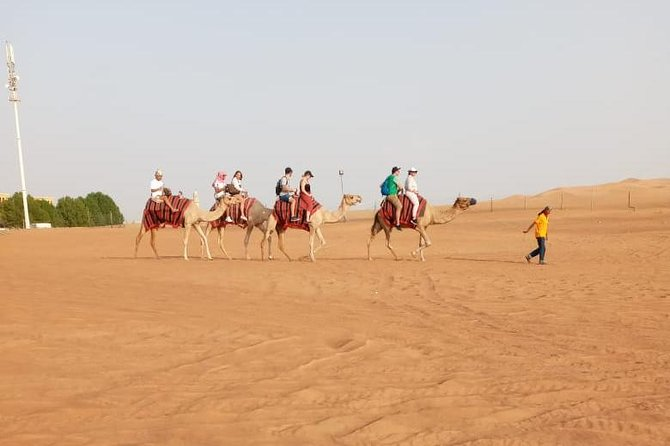 Morning Desert Safari Dubai with Camel Ride, Dune Bashing and Sand Boarding