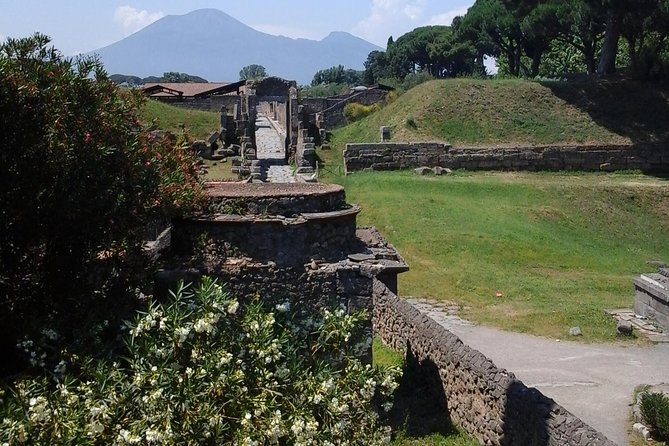 Transfer from Naples Airport to Ravello including 2 hr stop to visiting the Ruins of Pompeii on the way photo 2