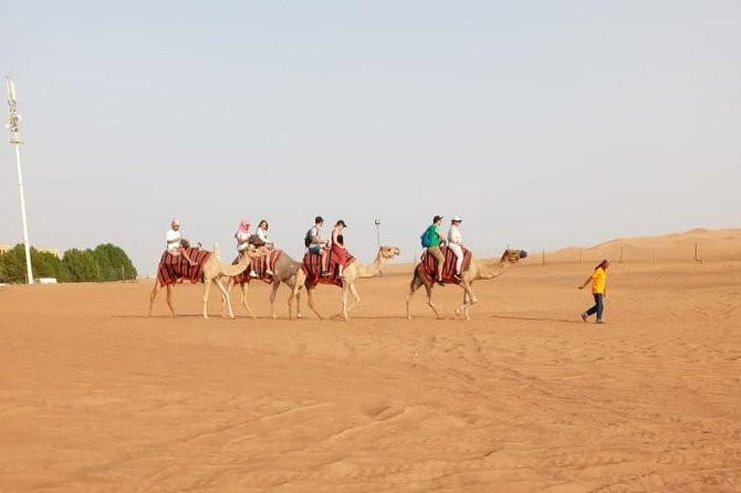 Private - Evening Desert Safari with Camel Ride, Belly Dance and Dune Bashing photo 3
