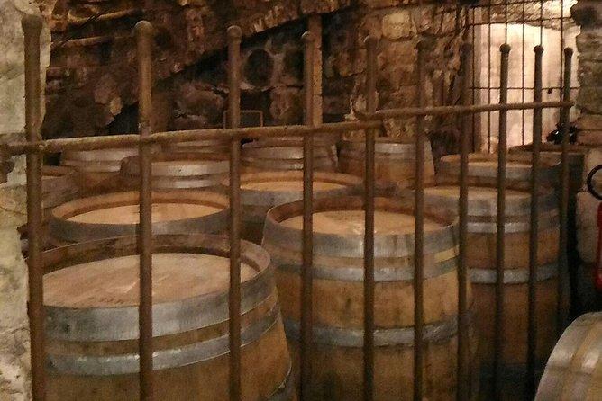 Tour Paestum Temples+Guided visit Mozzarella di Bufala Farm +Wine tasting in Cilento National Park