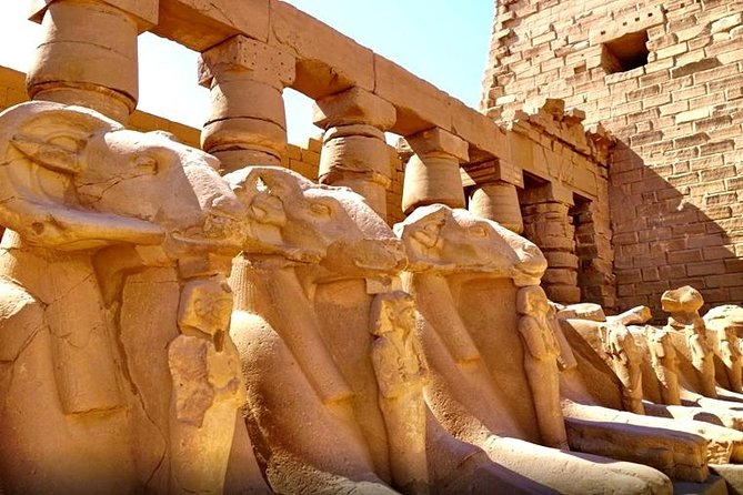 Day Tour to Luxor From Aswan by Train