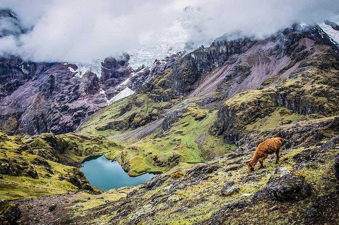 Private Lares Trek To Machu Picchu 4 Days