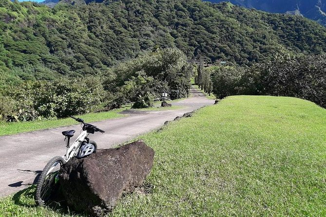 Bike rental electric mountain bike