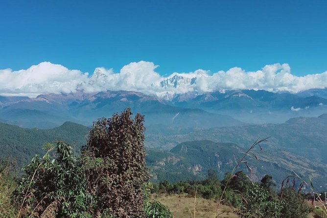4 Days Tranquil and Majestic - The Royal Trek.