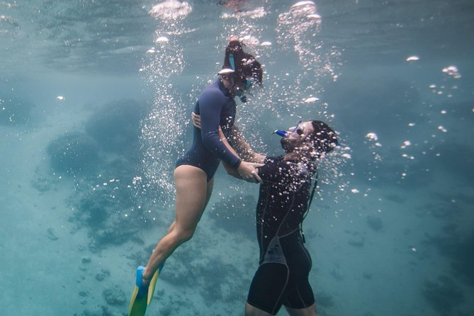 Private snorkel tour for couples, honeymooners, weddings - rarotonga Cook Islands