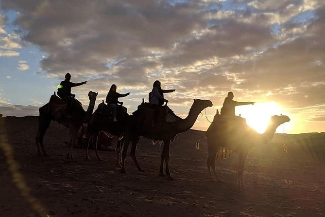 Experienced Tour for Camel ride during the sunset with Local Bedouin Dinner photo 6