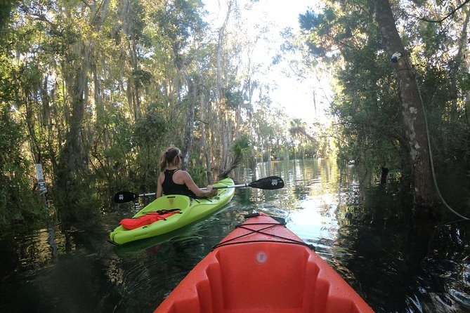 Full Day Single Kayak Rental In Crystal River photo 9