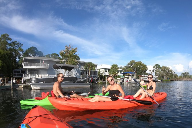 Full Day Single Kayak Rental In Crystal River photo 4