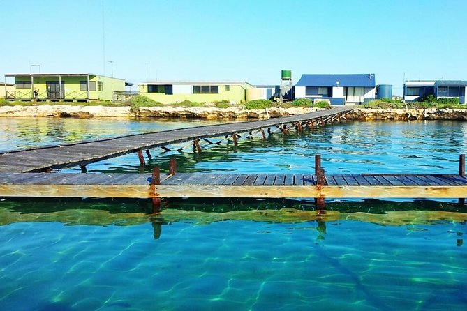 Abrolhos Islands 3 day fishing charter