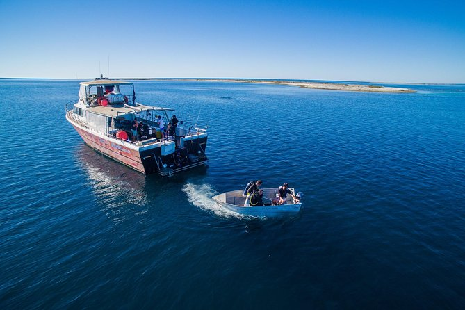 Abrolhos Islands 4 day fishing charter