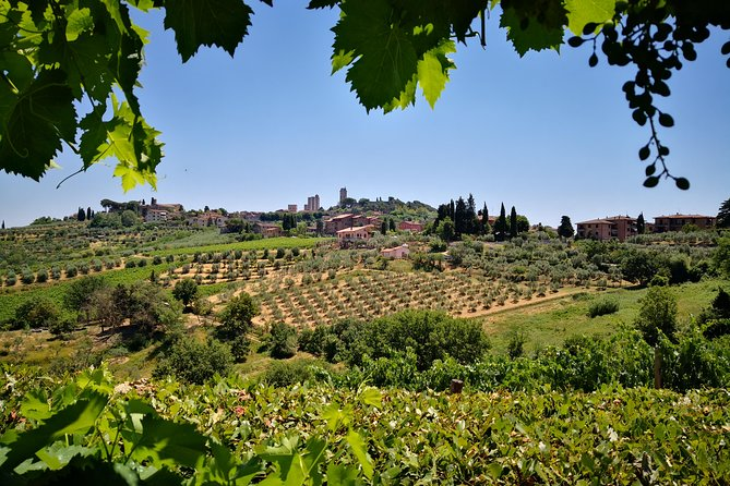 SAN GIMIGNANO and SIENA plus Lunch and Wine tasting TOURS FULL DAY photo 2