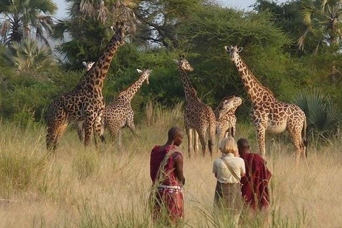 3 Days Private Safari in Masai Mara National Reserve, Kenya
