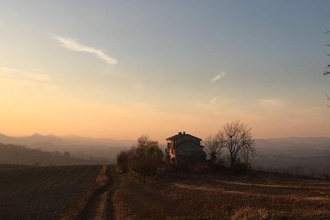 Tasting and visit to the cellar in the heart of Monferrato