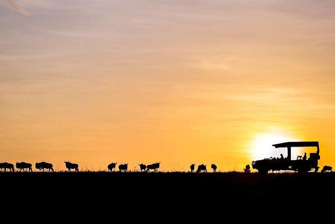"""""""Ultimate Kenya Adventure 09 Days Safari"""""""