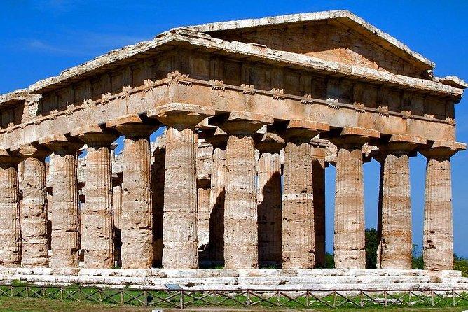 Paestum Temples, Bufala Mozzarella farm, Wine tasting in Cilento National Park!