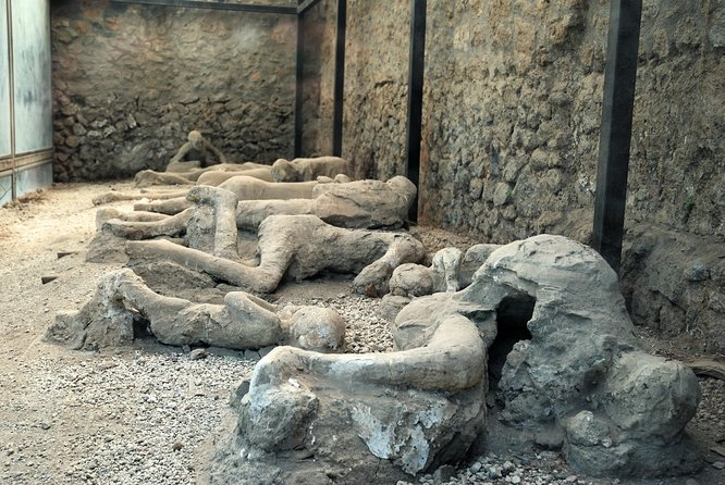 VIP Pompeii and Vesuvius Small Group tour from Sorrento with Guide and Tickets